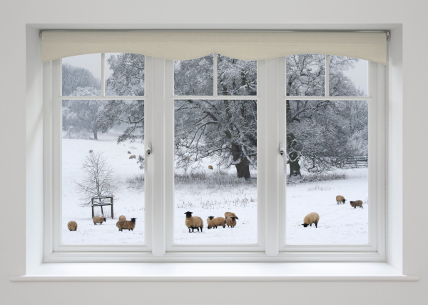 Should You Consider Sheep's Wool Insulation?