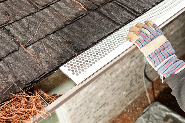 Gutter Protectors: Are They Worth the Extra Cost?