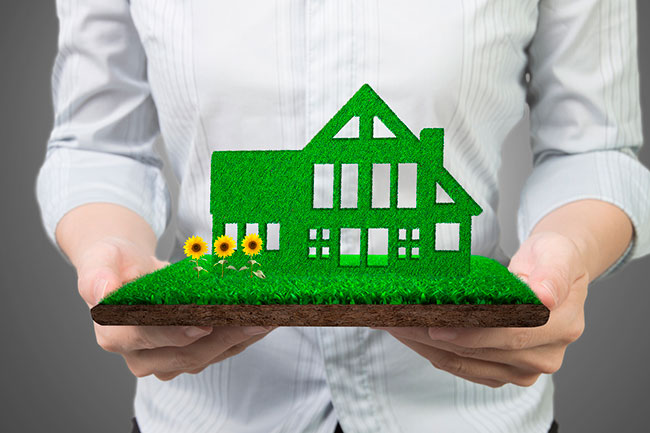 Green Homes vs. Zero Energy Homes: What are the Key Differences?